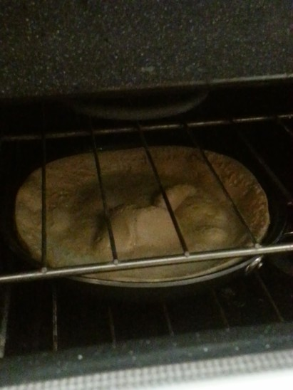 Pan in Oven 2